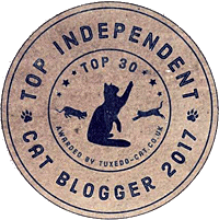 Top Cat Blogger
