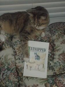 lilycatnapped2-009