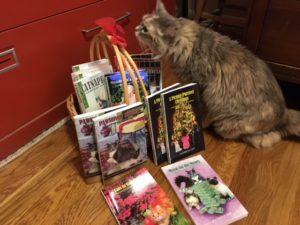 Mindful Monday – Cats and Books | Catscapades